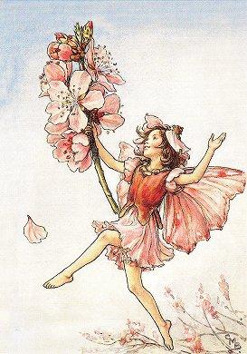 シシリー・メアリー・バーカーの画像 p1_37